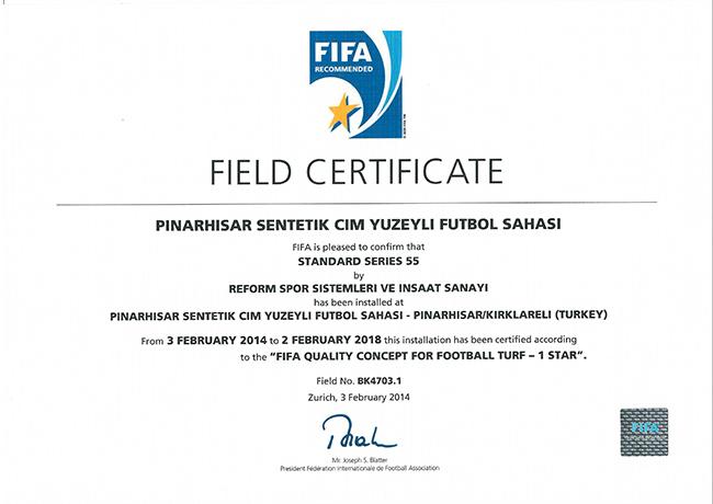 11 fifa1 pinarhisar kirklareli futbol sahasi 2014